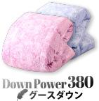 down power 380 グースダウン
