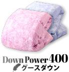 down power 400 グースダウン