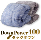 down power 400 ダックダウン